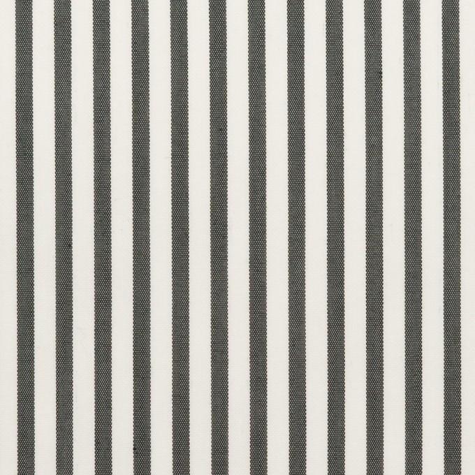 コットン&ポリエステル混×ストライプ(チャコール)×ブロードストレッチ イメージ1