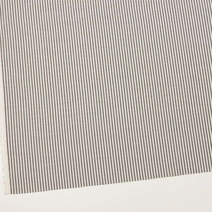 コットン&シルク×ストライプ(チャコール&アイボリー)×ブロード イメージ2