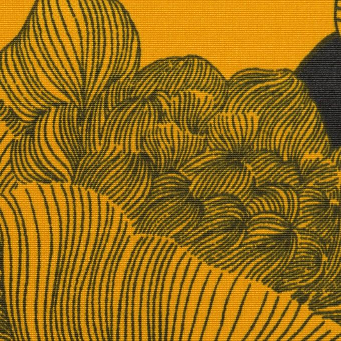 ナイロン×フラワー(パンプキン&ブラック)×タッサーポプリン イメージ1