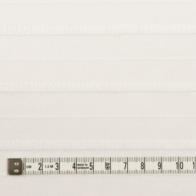コットン&レーヨン×ボーダー(オフホワイト)×ボイルジャガード イメージ4
