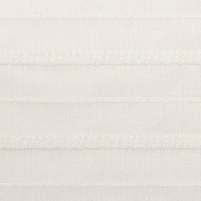 コットン&レーヨン×ボーダー(オフホワイト)×ボイルジャガード イメージ1