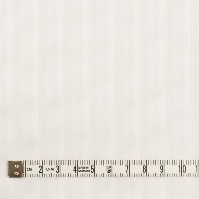 コットン×ストライプ(オフホワイト)×ボイルジャガード イメージ4