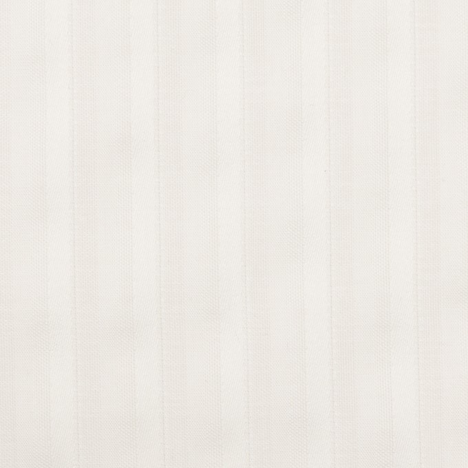 コットン×ストライプ(オフホワイト)×ボイルジャガード イメージ1