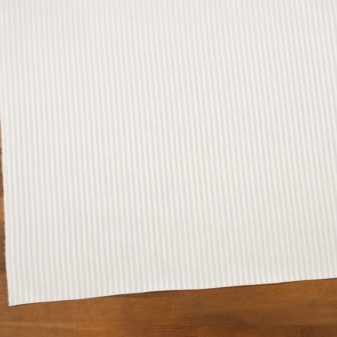 コットン×ストライプ(オフホワイト)×ブロードジャガード イメージ2