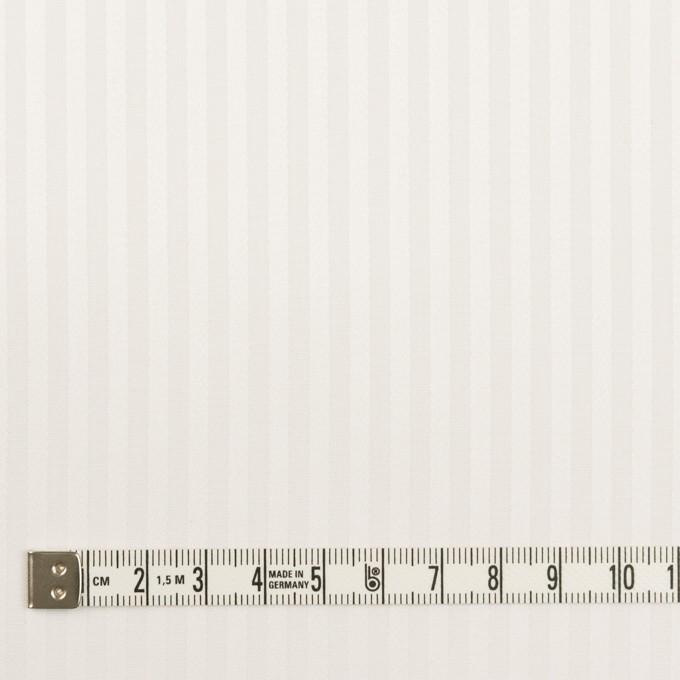コットン×ストライプ(オフホワイト)×ブロードジャガード イメージ4