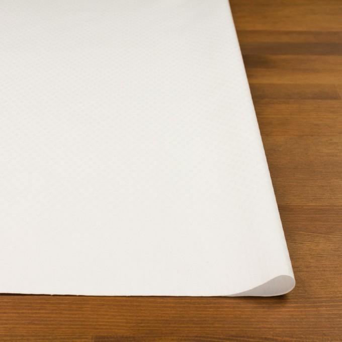 コットン×ダイヤ(ホワイト)×ブロードジャガード イメージ3