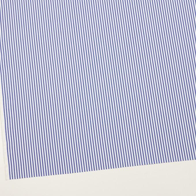 コットン&ポリエステル×ストライプ(ブルー)×ローン イメージ2