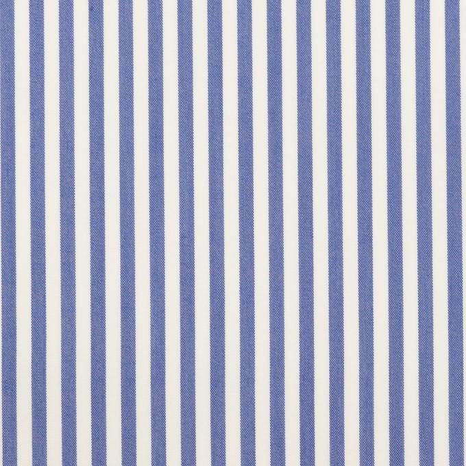 コットン&ポリエステル×ストライプ(ブルー)×ローン イメージ1