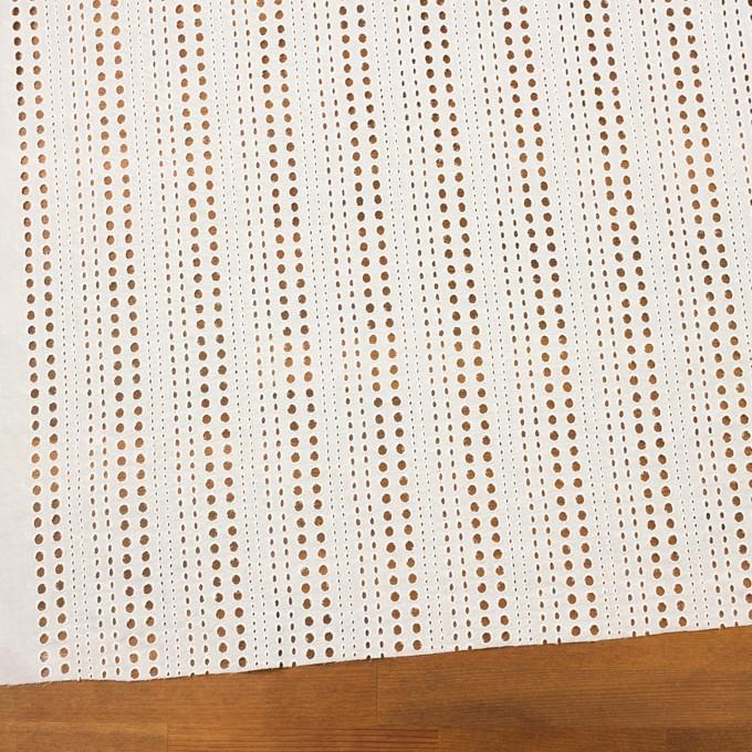 コットン×サークル(オフホワイト)×ローン刺繍_全2色 イメージ2