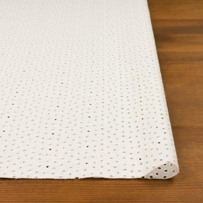 コットン×リーフ(オフホワイト)×ピケ刺繍 イメージ3