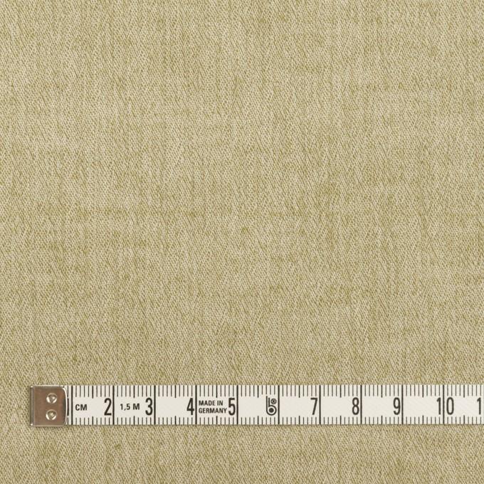 コットン&リネン×無地(グラスホッパー)×ヨウリュウ イメージ4