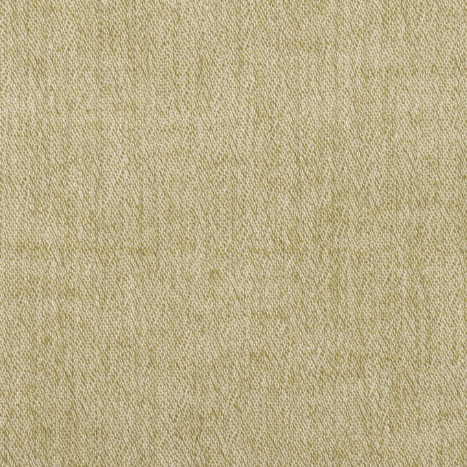 コットン&リネン×無地(グラスホッパー)×ヨウリュウ イメージ1