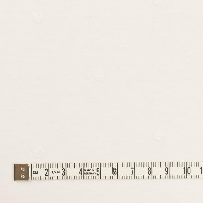 コットン×水玉(オフホワイト)×天竺ニット刺繍 イメージ4