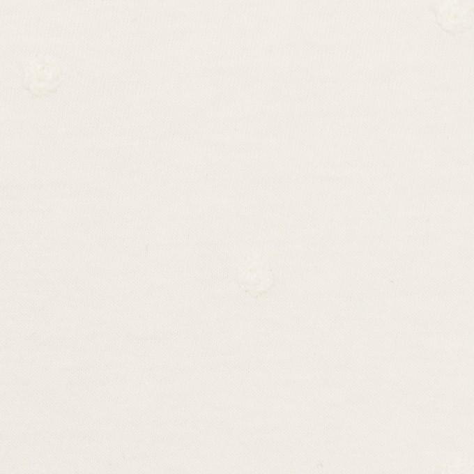 コットン×水玉(オフホワイト)×天竺ニット刺繍 イメージ1