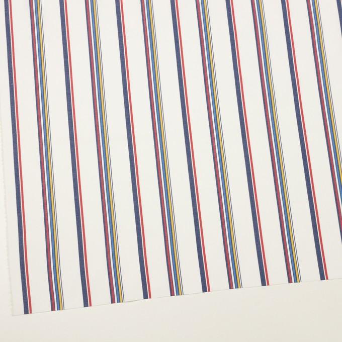 コットン×ストライプ(マルチ)×ブロード イメージ2