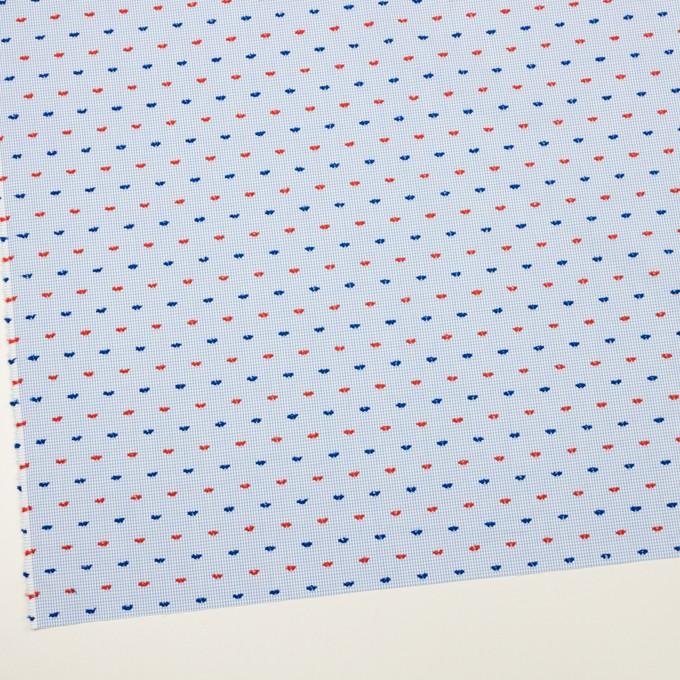 コットン×チェック(サックス、レッド&ネイビー)×ブロード・カットジャガード イメージ2