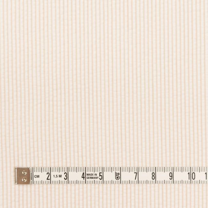 コットン×ストライプ(ベージュ)×サッカー イメージ4