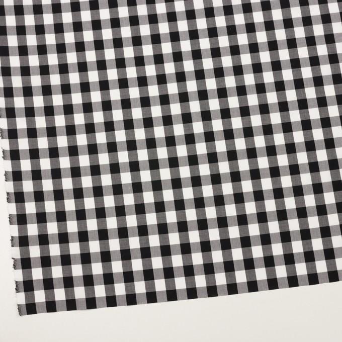 コットン×チェック(ブラック)×ローン イメージ2