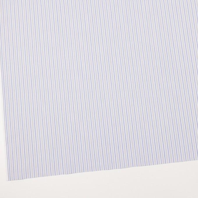 コットン×ストライプ(ヒヤシンスブルー)×ブロード イメージ2