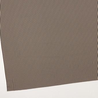 ポリエステル×ストライプ(ベージュ&ブラック)×ジョーゼット サムネイル2