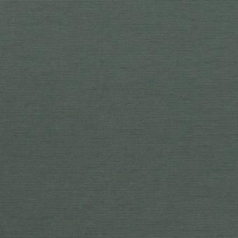 ナイロン×無地(スレートグリーン)×タッサーポプリン_全2色