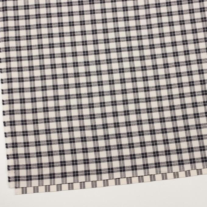 コットン×チェック(エクリュ&ブラック)×ビエラ イメージ2