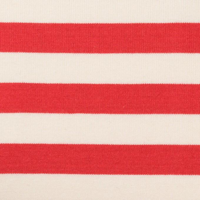 コットン×ボーダー(レッド)×天竺ニット_全5色 イメージ1
