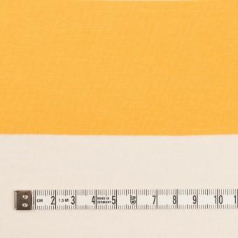 コットン×ボーダー(サンフラワー)×天竺ニット_全7色 サムネイル4