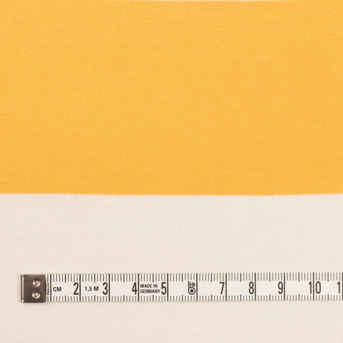 コットン×ボーダー(サンフラワー)×天竺ニット_全7色 イメージ4