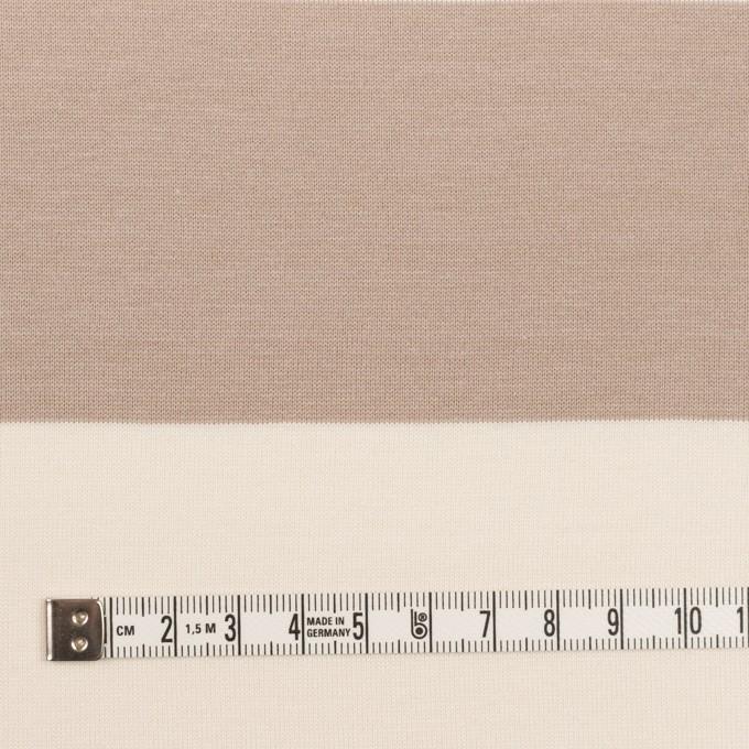 コットン×ボーダー(スモーキーベージュ)×天竺ニット_全7色 イメージ4