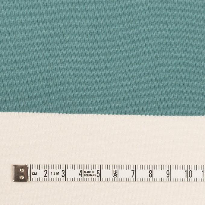 コットン×ボーダー(アンティークグリーン)×天竺ニット_全7色 イメージ4