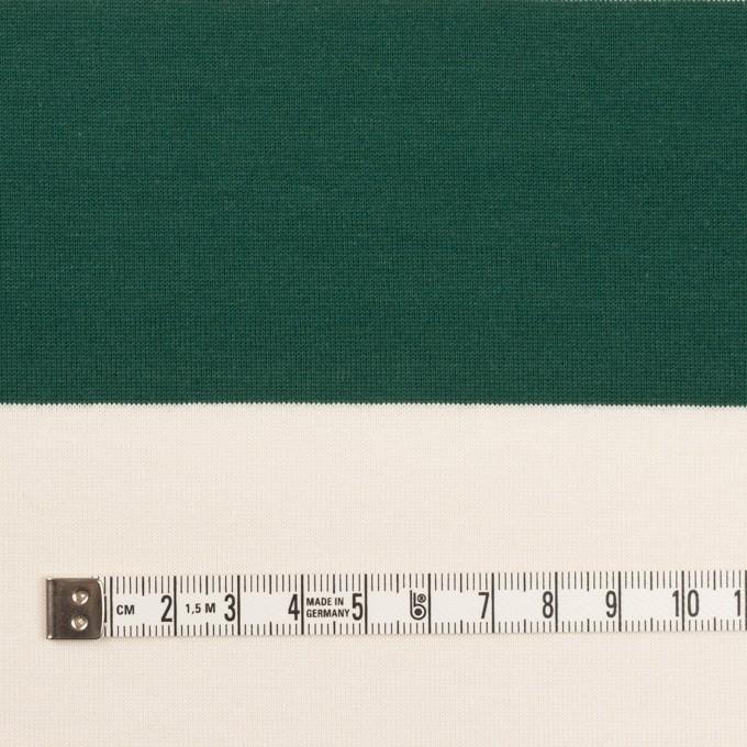 コットン×ボーダー(モスグリーン)×天竺ニット_全7色 イメージ4