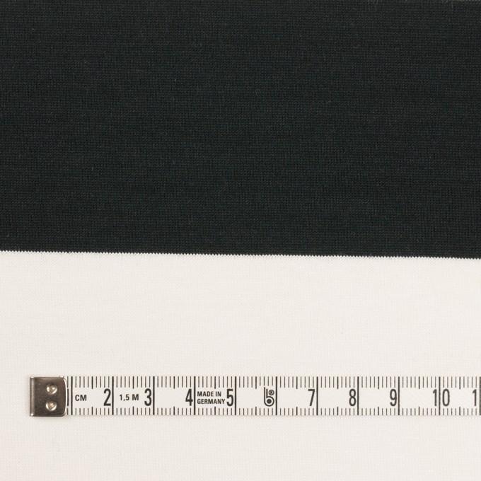 コットン×ボーダー(ブラック)×天竺ニット_全7色 イメージ4