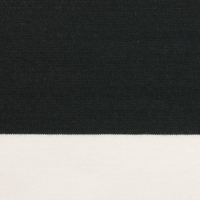 コットン×ボーダー(ブラック)×天竺ニット_全7色 イメージ1
