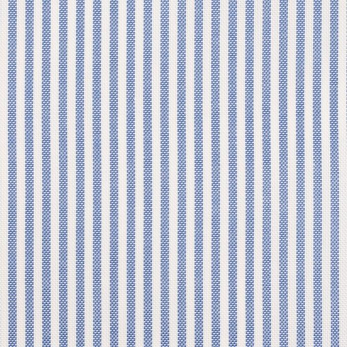 コットン×ストライプ(ブルー)×薄オックスフォード イメージ1
