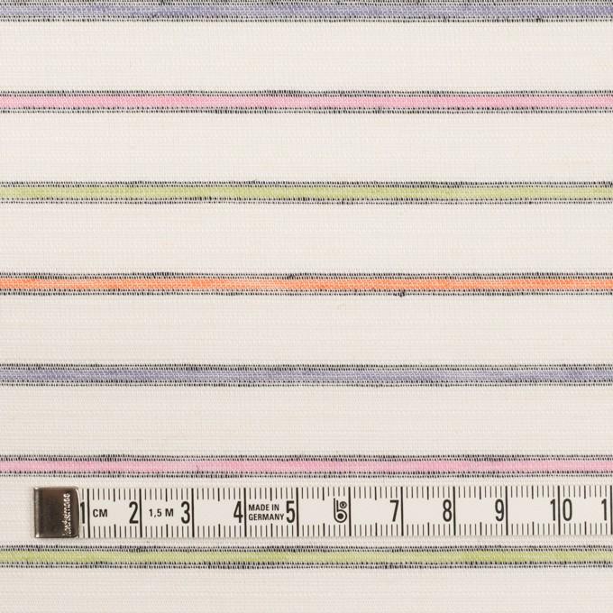 コットン×ボーダー(マルチ)×かわり織 イメージ4