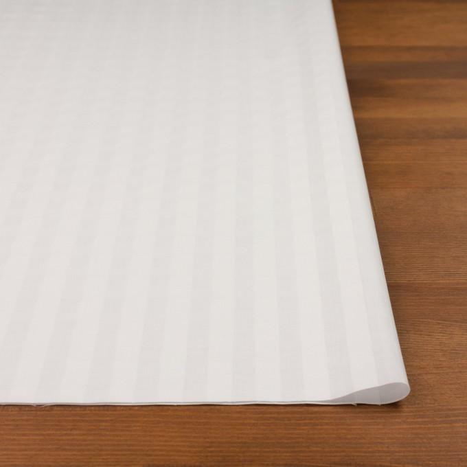 コットン×チェック(オフホワイト)×ローンジャガード イメージ3