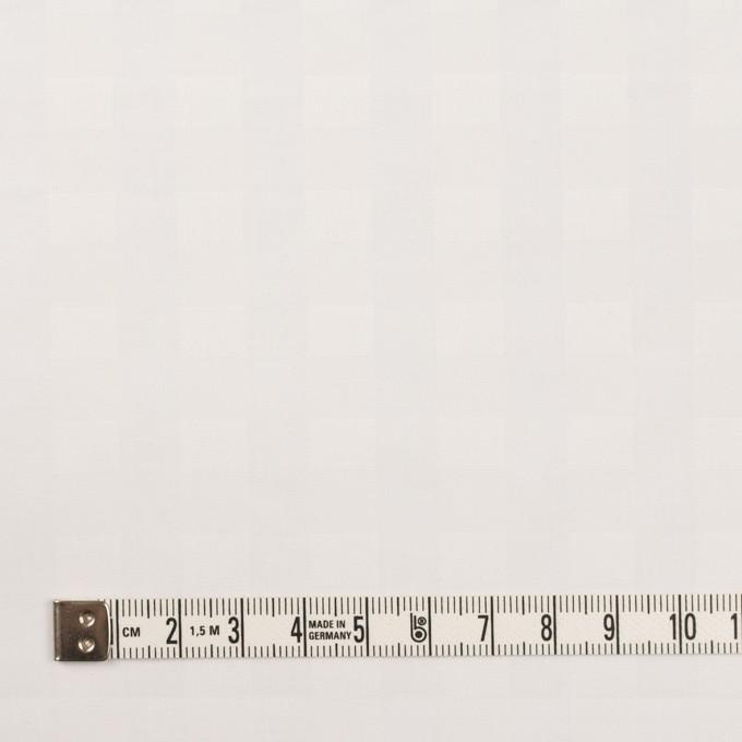 コットン×チェック(オフホワイト)×ローンジャガード イメージ4