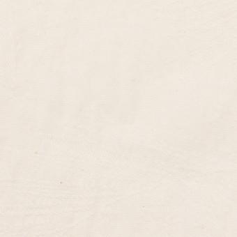 コットン×リーフ(バニラ)×シーチング・ジャガード サムネイル1