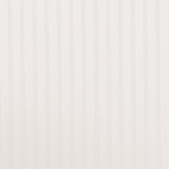 コットン×ストライプ(ホワイト)×サージジャガード