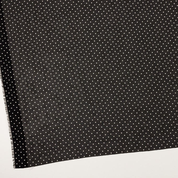 ポリエステル×ドット(ブラック)×ジョーゼット イメージ2