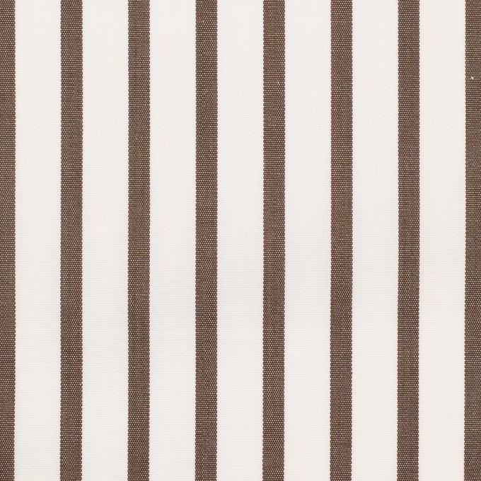 コットン×ストライプ(アッシュブラウン)×ブロード イメージ1