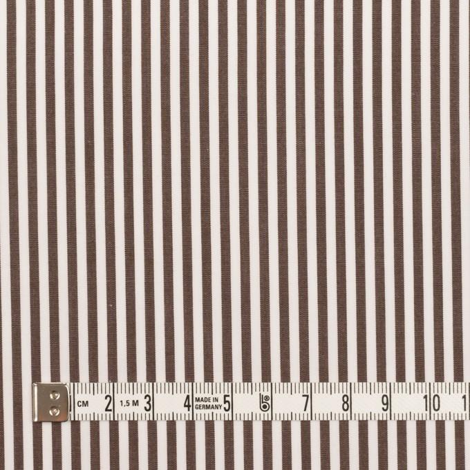 コットン×ストライプ(アッシュブラウン)×ブロード イメージ4