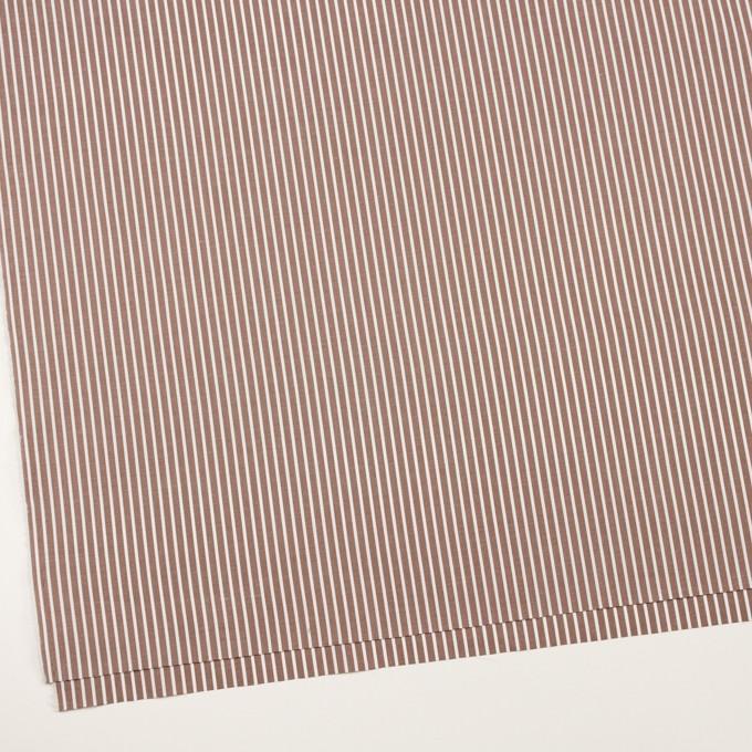 コットン×ストライプ(アッシュブラウン)×ブロード_イタリア製 イメージ2