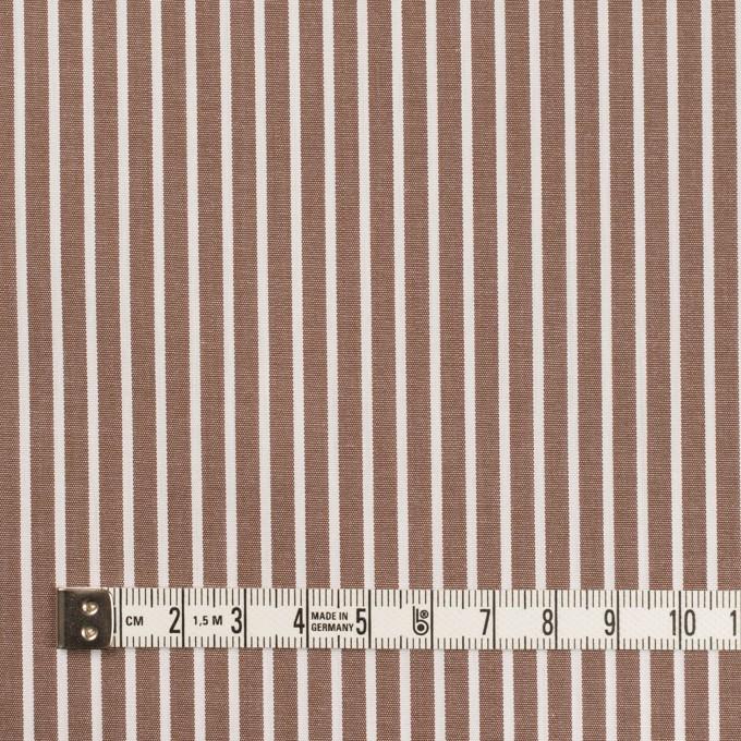コットン×ストライプ(アッシュブラウン)×ブロード_イタリア製 イメージ4