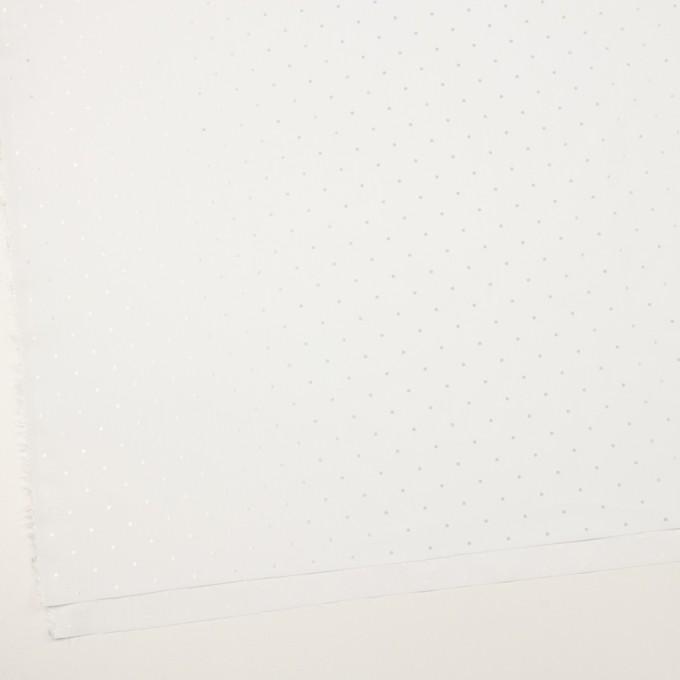 コットン&リヨセル×ドット(ホワイト)×ローンジャガード イメージ2