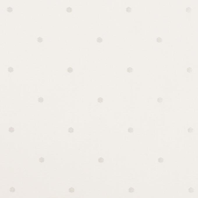 コットン&リヨセル×ドット(ホワイト)×ローンジャガード イメージ1