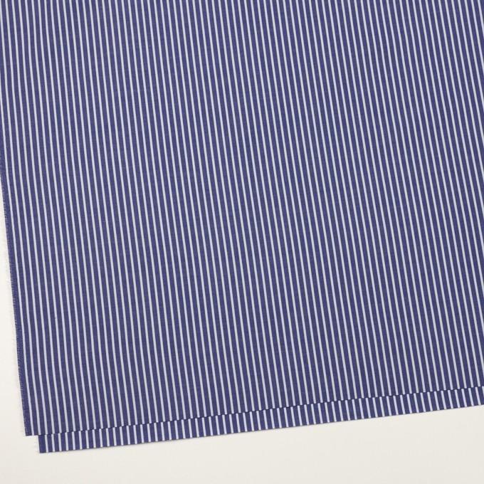 コットン×ストライプ(プルシアンブルー)×ブロード イメージ2