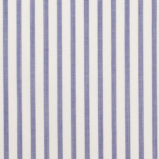 コットン×ストライプ(ヒヤシンスブルー)×ブロード_イタリア製 イメージ1