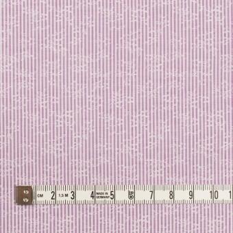 コットン×ストライプ(ラベンダー)×ブロードジャガード_全2色 サムネイル4